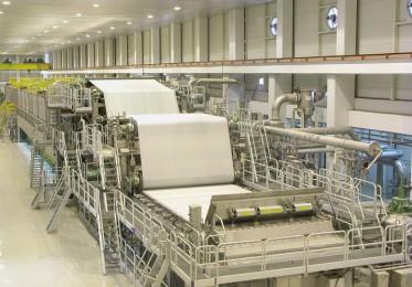Kağıt Sektörü
